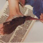 髪以外にも効果のあるヘナトリートメント 〜 for  Feet